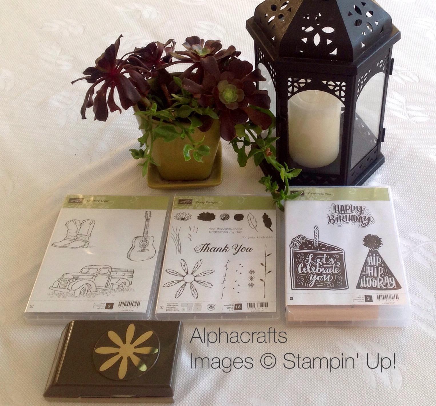 Card Inspiration - Stamp Sets