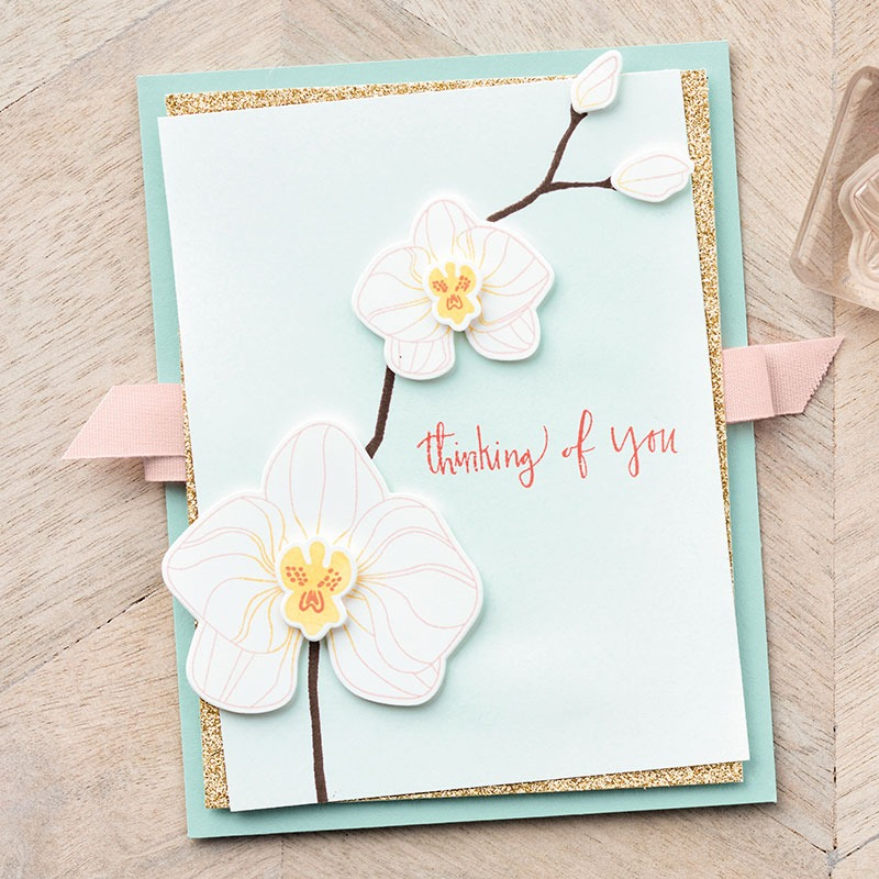 Climbing Orchid Card Sample