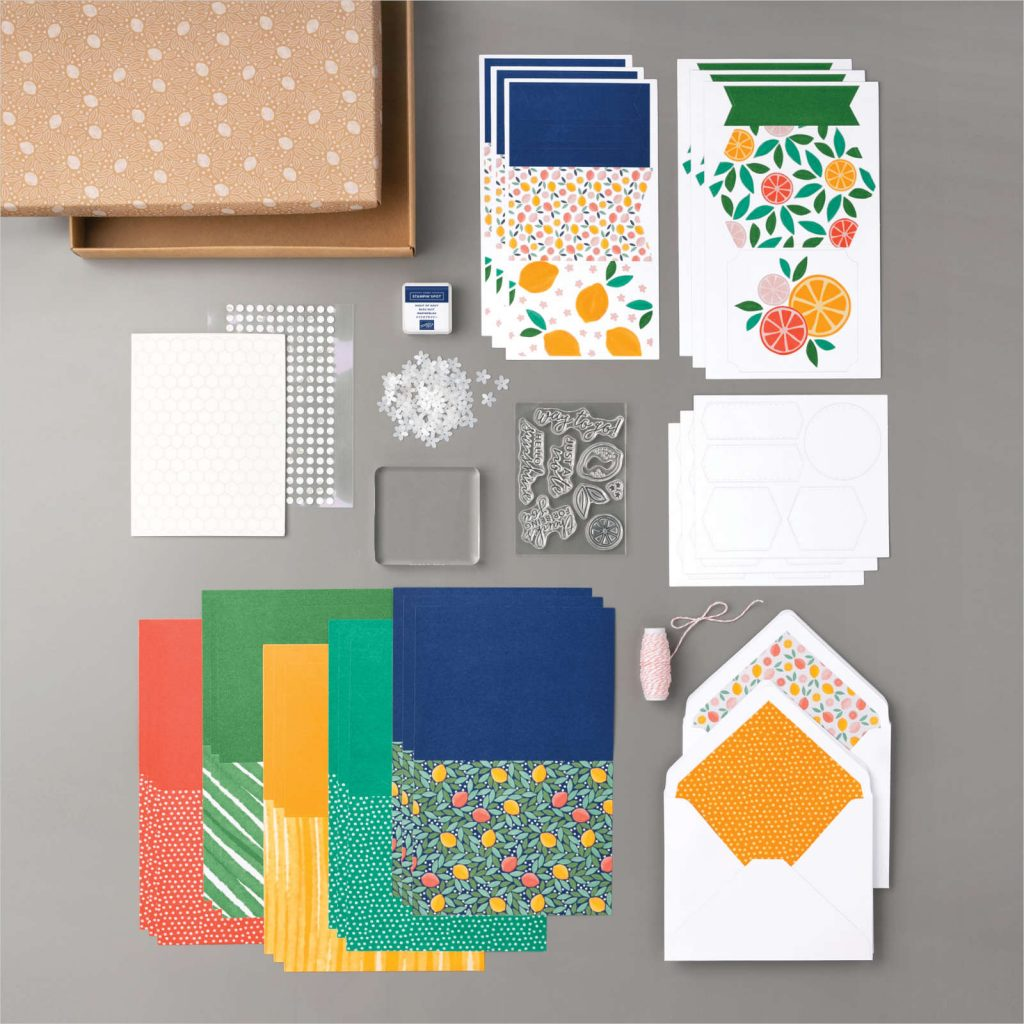 Materials included in the Simply Citrus Kit from Stampin' Up!. Cardstock, stamp set, ink spot, acrylic block, adhesives and embellishments.
