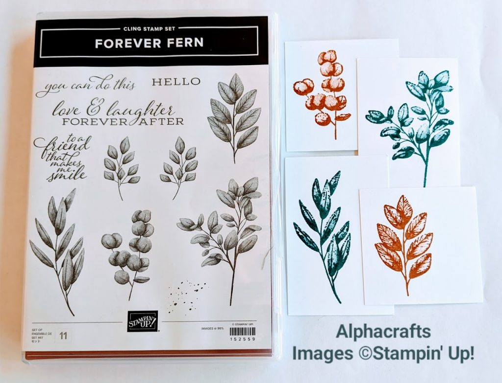 Forever Fern stamp set by Stampin' Up! and stamped leaves using Pretty Peacock and Cinnamon Cider ink pads to show how images look when stamped.